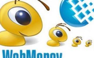 Что за валюта WMZ на Вебмани