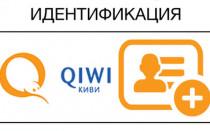 Как QIWI сделать статус профессиональный