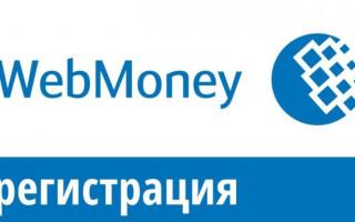 Как зарегистрироваться в Вебмани в России москва